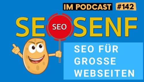 SEO für große Webseiten – gibt es Unterschiede? (Gespräch mit Kevin Indig) #142